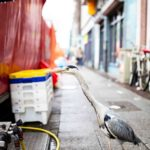 Uccello_Street_Amsterdam_by_Marco_Immediata-150x150